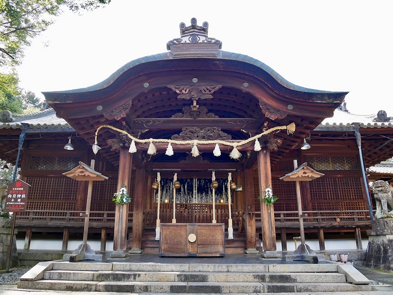 京都 向日神社 拝殿