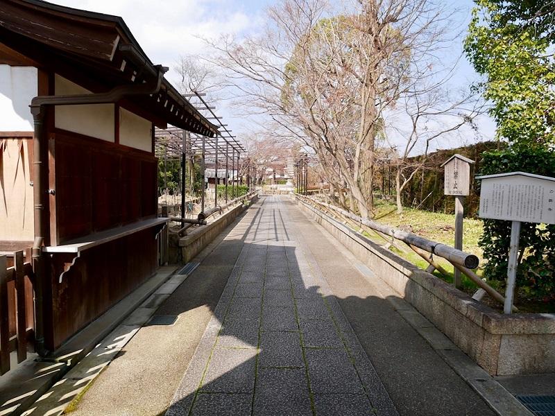 京都 乙訓寺