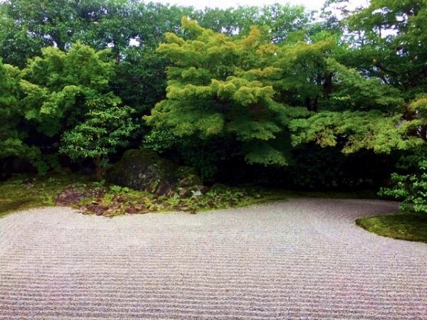 圓徳院 庭
